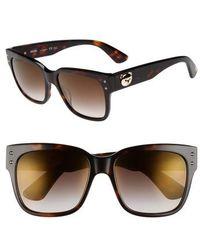 Moschino - 56mm Gradient Lens Sunglasses - Dark Havana - Lyst