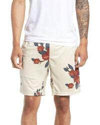 Zanerobe - Bloom Sideline Shorts - Lyst