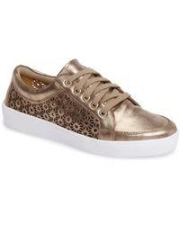 Klub Nico Salena Sneaker - Brown