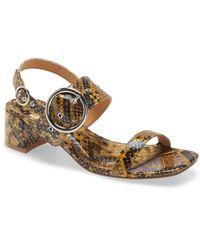 TOPSHOP Dakota Snake Buckle Block Sandals - Brown