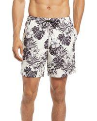PacSun Hawaii Floral Swim Trunks - Multicolor