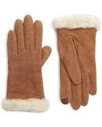 UGG UGG Genuine Shearling Trim Suede Tech Gloves - Brown