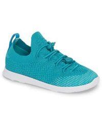 Native Shoes - Ap Mercury Liteknit Sneaker - Lyst