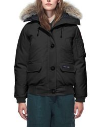 Canada Goose Chilliwack Down Bomber Jacket W/ Fur Hood - Black
