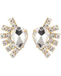 Loren Hope Olivia Crystal Fan Stud Earrings - Metallic