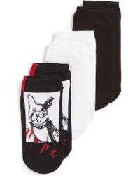 Hue - Stubborn Dog 3-pack Socks - Lyst