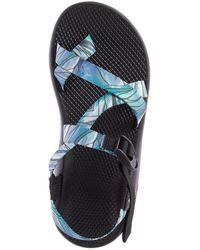 Chaco Z 2 Classic Sandal - Multicolor