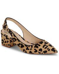 Vince Camuto Steffien2 Leopard Print Haircalf Slingback Block Heel Pumps - Brown