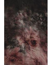 Valentino Garavani Printed Woven Stole - Brown