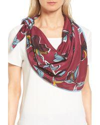 Halogen - Botanical Silk Scarf - Lyst