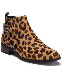 Steven by Steve Madden Chavi Boot Leopard - Brown