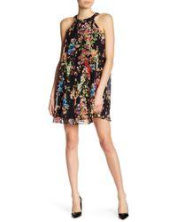Betsey Johnson - Sleeveless Floral Trapeze Dress - Lyst
