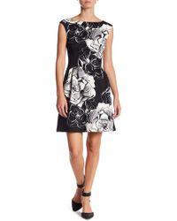 Vince Camuto - Floral Print Cap Sleeve Dress (petite) - Lyst