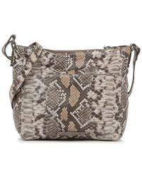 Lucky Brand Eddo Snake-print Leather Crossbody Bag In Mdbrown 01 At Nordstrom Rack - Gray
