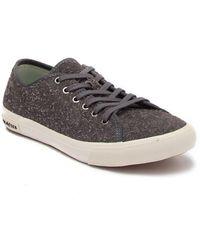 Seavees Monterey Suede Sneaker - Multicolor