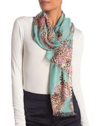 La Fiorentina Printed Knit Scarf - Multicolor