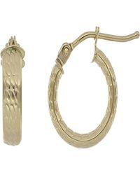 Bony Levy 14k Yellow Gold 8mm Hoop Earrings - Metallic