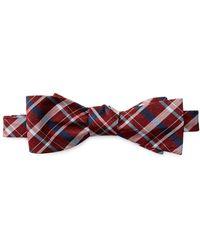 Ben Sherman - Kensleigh Plaid Bow Tie - Lyst