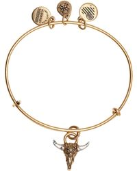 ALEX AND ANI - Spirited Skull Engraved Bracelet - Lyst