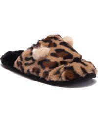 Dirty Laundry - Kitty Kat Cheetah Slipper - Lyst