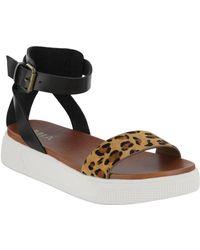 MIA Lunna Platform Ankle Strap Sandal - Black