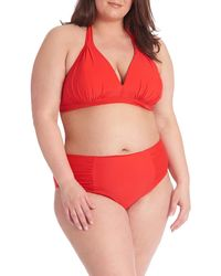 Rachel Roy Push Up Halter Bikini Top - Red