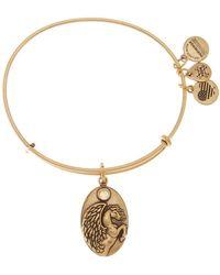 ALEX AND ANI | Crystal Detail Pegasus Charm Adjustable Bracelet | Lyst