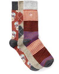 Original Penguin | Assorted Crew Socks Box Set - Pack Of 3 | Lyst
