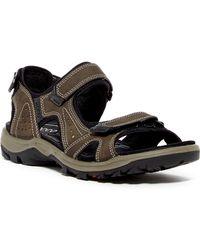 Ecco | Off Road Lite Sandal | Lyst