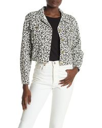Sugarlips Wildest Dreams Leopard Print Cropped Jacket - Multicolor