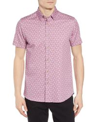 Ted Baker - Norflam Flamingo Print Sport Shirt - Lyst