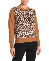 Catherine Malandrino Leopard Faux Fur Panel Knit Pullover Sweater - Multicolor