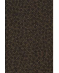 Valentino Wool & Silk Blend Animal Print Scarf In Army At Nordstrom Rack - Multicolor