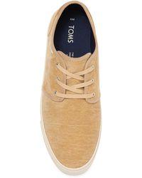 TOMS Carlo Velvet Sneaker - Brown