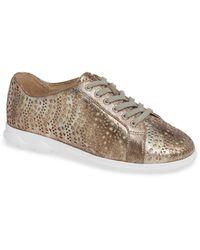 Vaneli Laren Perforated Sneaker - Multicolor