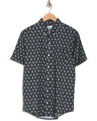 Bermies Pineapple Shirt - Gray