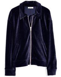 Madewell Texture & Thread Velour Corduroy Bomber Jacket - Blue