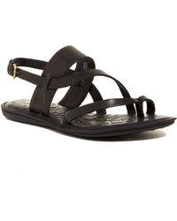 Born Favignana Leather Sandal - Black