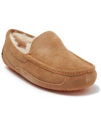 UGG Ascot Puretm Lined Slipper - Brown