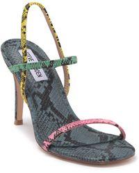 Steve Madden Snap Strappy Sandal - Multicolour