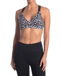 Roberto Cavalli Cheetah Print Multi Strap Sports Bra - Multicolor