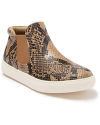 Matisse Harlan Snakeskin Embossed Pull-on Sneaker - Brown