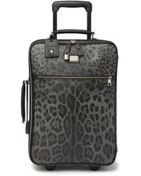 "Dolce & Gabbana 20"" Leopard Print Spinner Suitcase - Black"