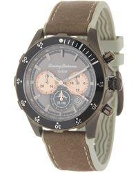 Tommy Bahama Men's Atlantis Diver Chronograph Leather Strap Watch - Metallic