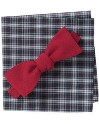 Original Penguin Ever Solid Bow Tie & Pocket Square Set - Red