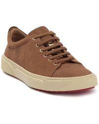 T C G Creuzot Suede Sneaker - Brown