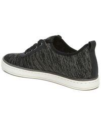 SOUL Naturalizer Krista Lace-up Sneaker - Black