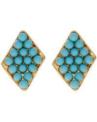 Diane von Furstenberg - Honey Bead Stud Earrings - Lyst