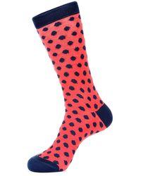Jared Lang - Fuzzy Polka Dot Sock - Lyst