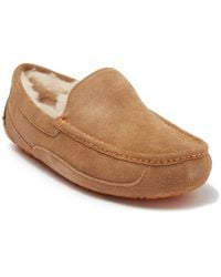 UGG Ascot Puretm Lined Slipper - Brown
